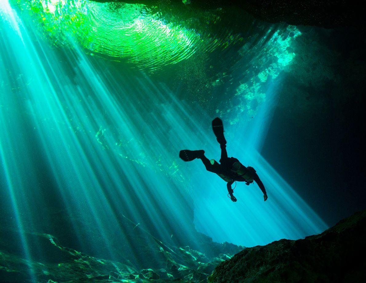 «Me sumergí en un cenote por primera vez en el cenote del Jardín del Edén, en …