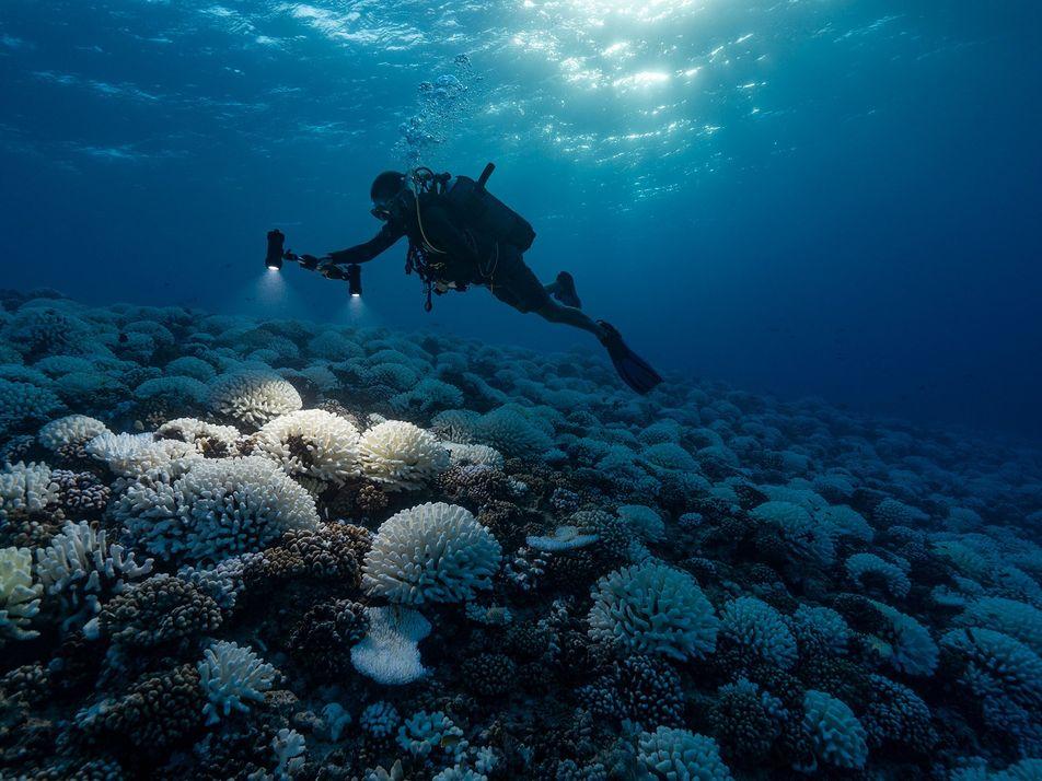 El cambio climático conduce al planeta hacia un «punto crítico» peligroso
