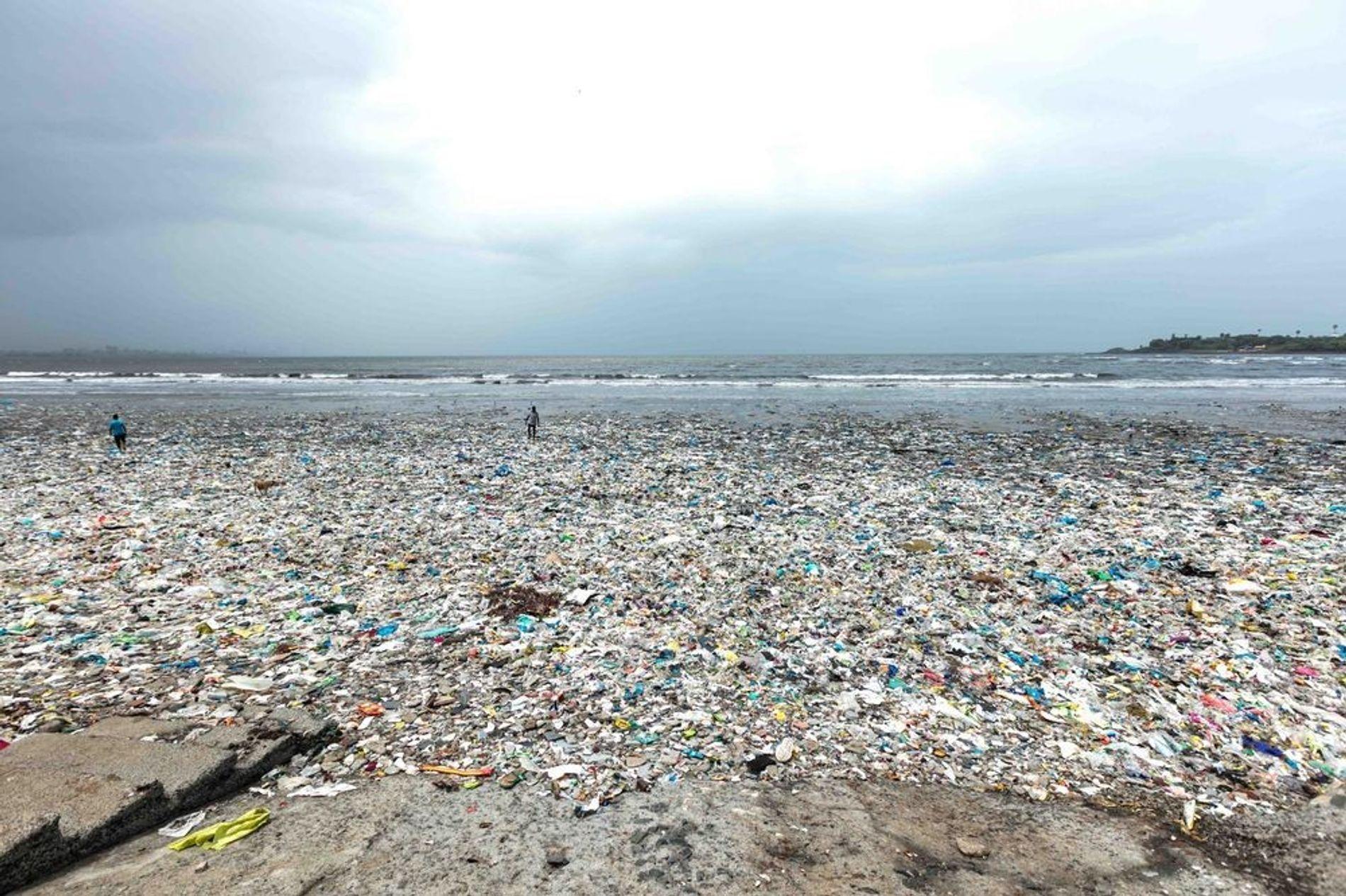 Una playa cubierta de basura, la mayor parte de ella plástica, que ha sido vertida en el mar y que la marea ha arrastrado hasta la orilla. En algunos lugares, la basura llega hasta la altura de los tobillos y verla me hizo preguntarme si vamos a aprender alguna vez que esta cantidad de contaminación solo va a acelerar el daño que los humanos provocamos a nuestro planeta.
