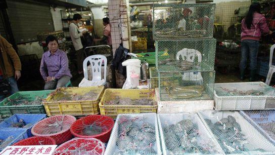 Mercado de Shenzhen