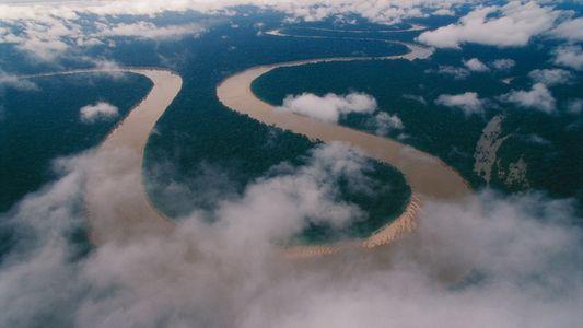Informan de las primeras muertes con coronavirus en las comunidades indígenas de la Amazonia