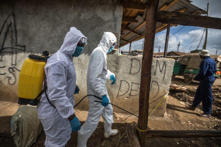 Los sanitarios desinfectan un camino