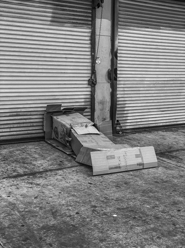 Refugio de cartón