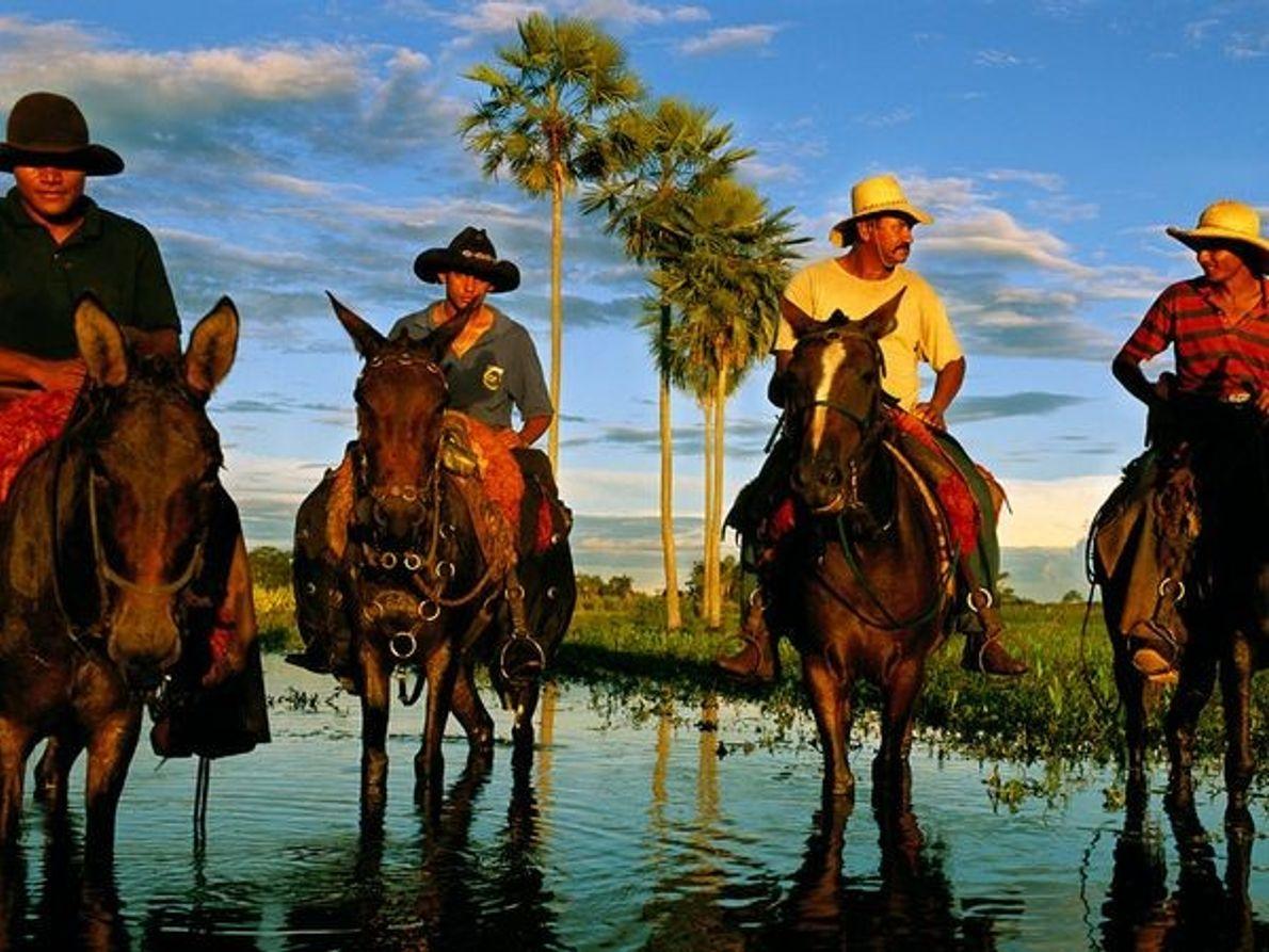 Ganaderos del Pantanal