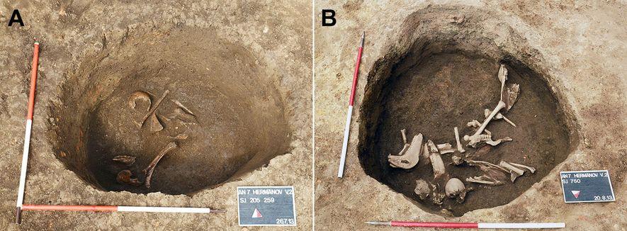 La fosa de Hermanov vinograd al principio de la excavación (derecha), con presencia de huesos de ...