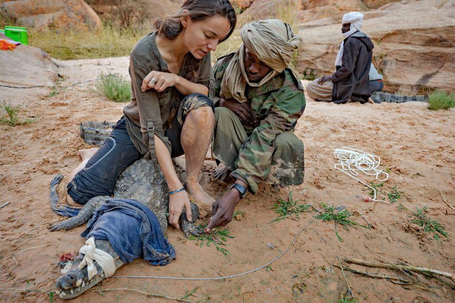 Reserva de Ennedi, Chad: Los trabajadores de AP Elsa Bussière y Ali Fodia sostienen y examinan ...