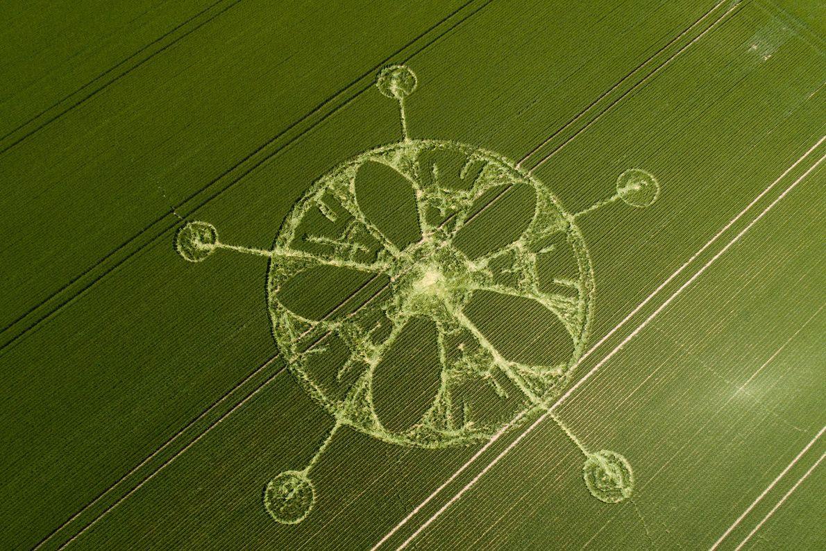 Un círculo