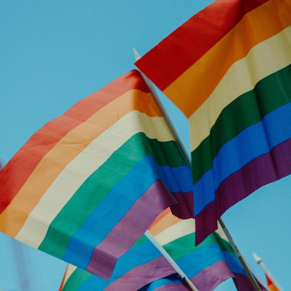 Orgullo LGBTIQ: cinco décadas de reivindicación