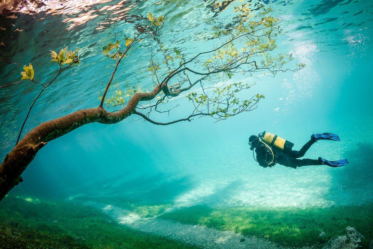 El Grüner See