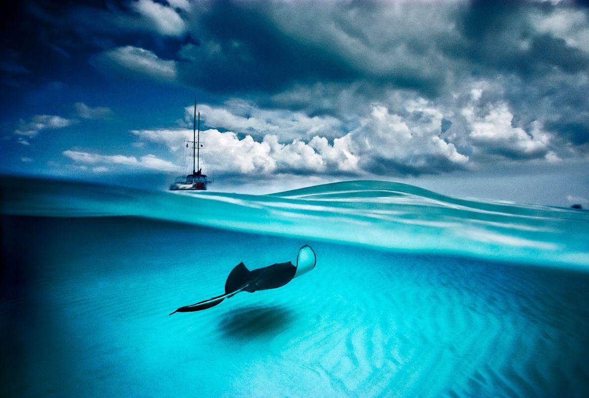 Una raya y un velero