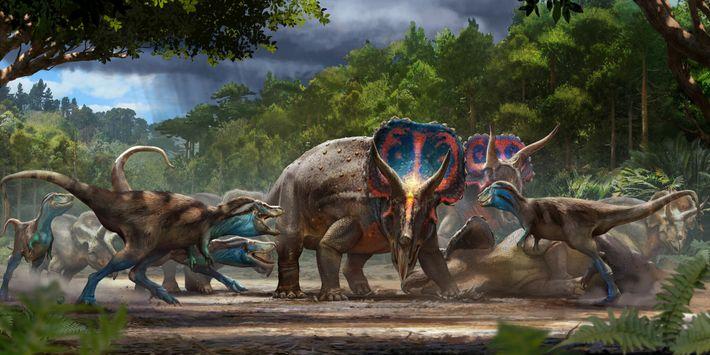 Ilustración de una pelea mortal entre un Triceratops y un T. rex joven
