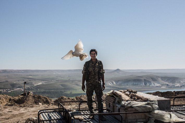 Guerrero en Siria