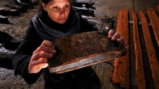 Los anillos de los árboles pueden utilizarse para datar yacimientos arqueológicos