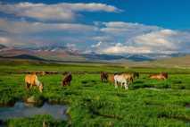 Parque nacional de Deosai