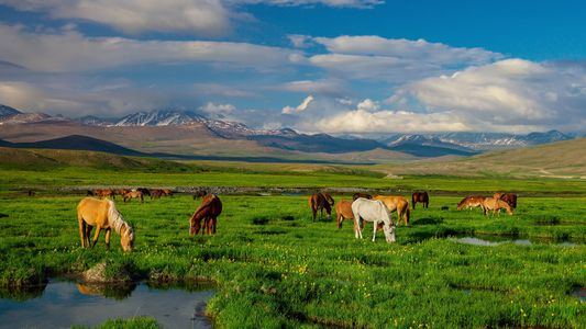 Los lugares más salvajes y hermosos de Pakistán