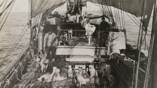 Imágenes de la expedición de Scott a la Antártida (1910-1912)