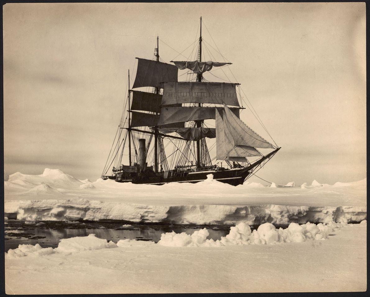 S.S. Terra Nova