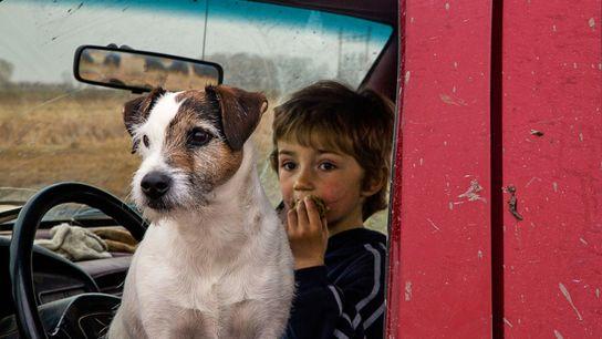 Imagen de un niño con un perro