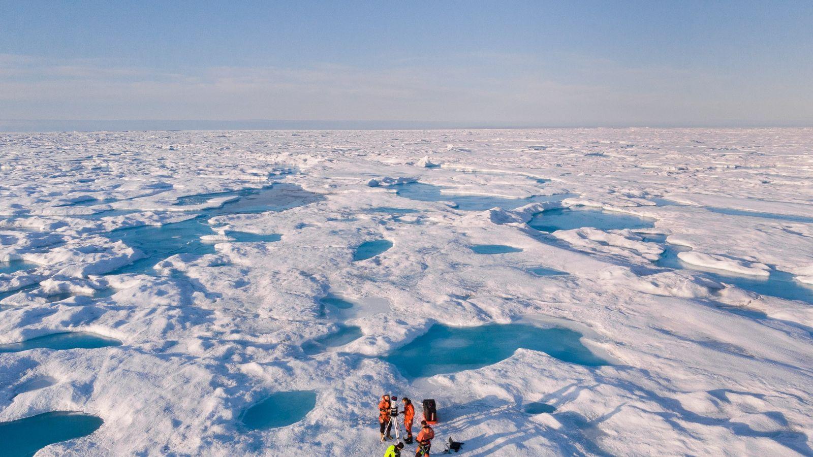 Banquisa del mar de Groenlandia