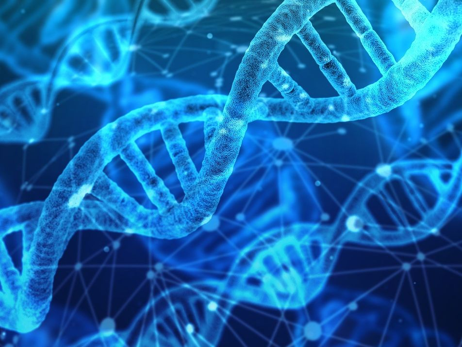 Hallan la molécula responsable de expandir las células tumorales