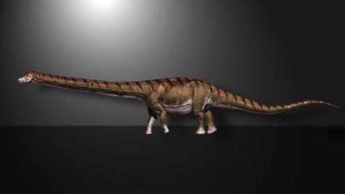 Este es el Patagotitan mayorum, el dinosaurio más grande descubierto hasta la fecha