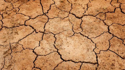 2021, el año clave contra el cambio climático