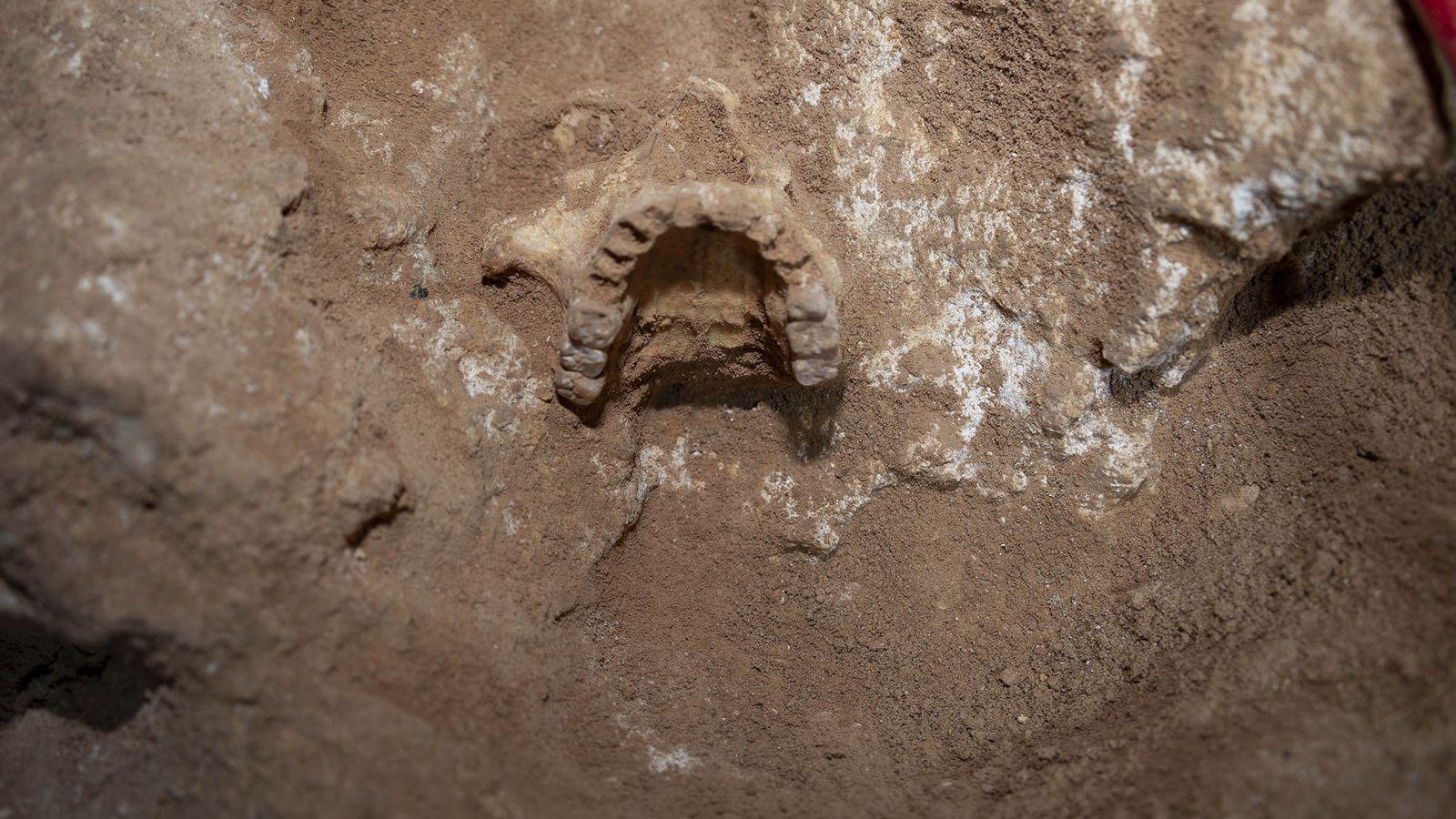 Genoma humano mas antiguo Islas Baleares