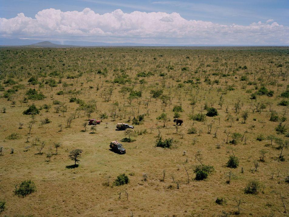 El mundo de la conservación de fauna salvaje