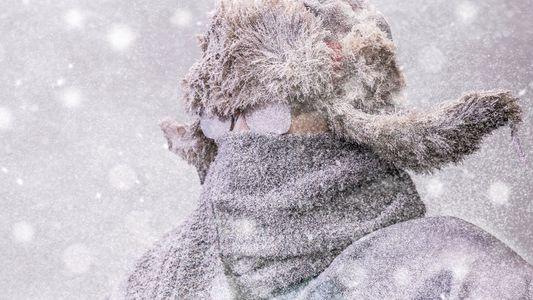 Confesiones de los amantes del tiempo frío