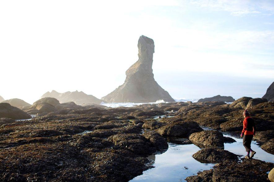 Costa de los Naufragios, península Olímpica, Washington