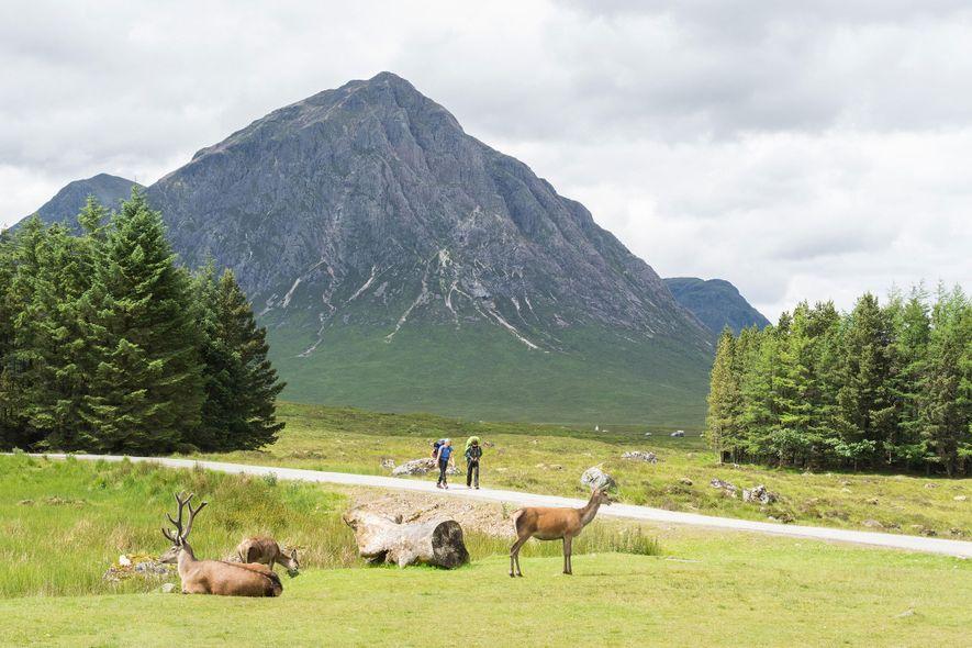 Ruta de las Highlands occidentales («West Highland Way»), Escocia