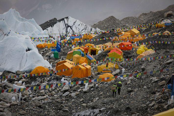 Everest Link