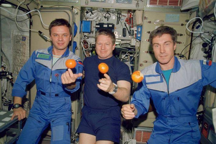 Miembros de la tripulación de la Expedition 1