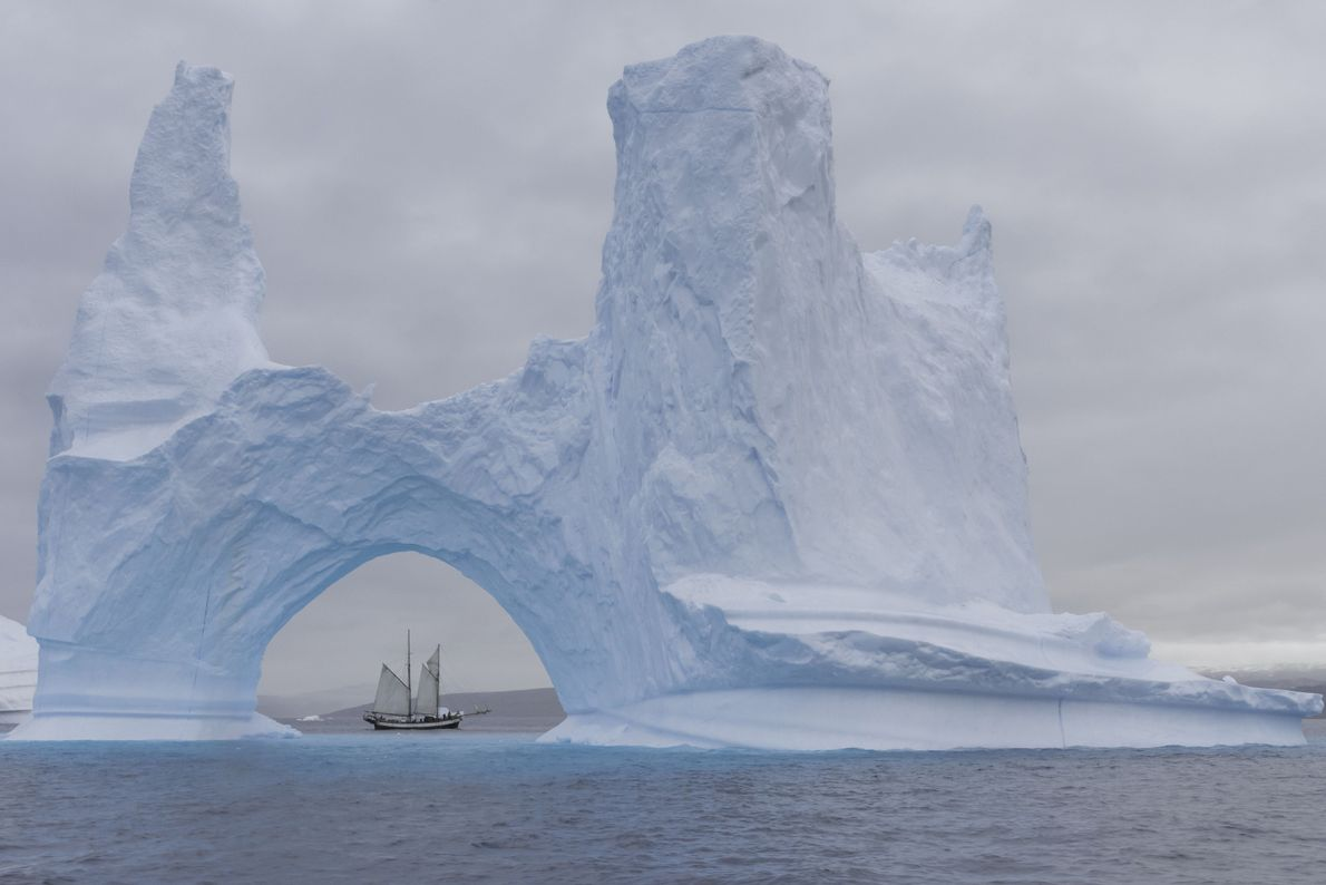 Entre el hielo