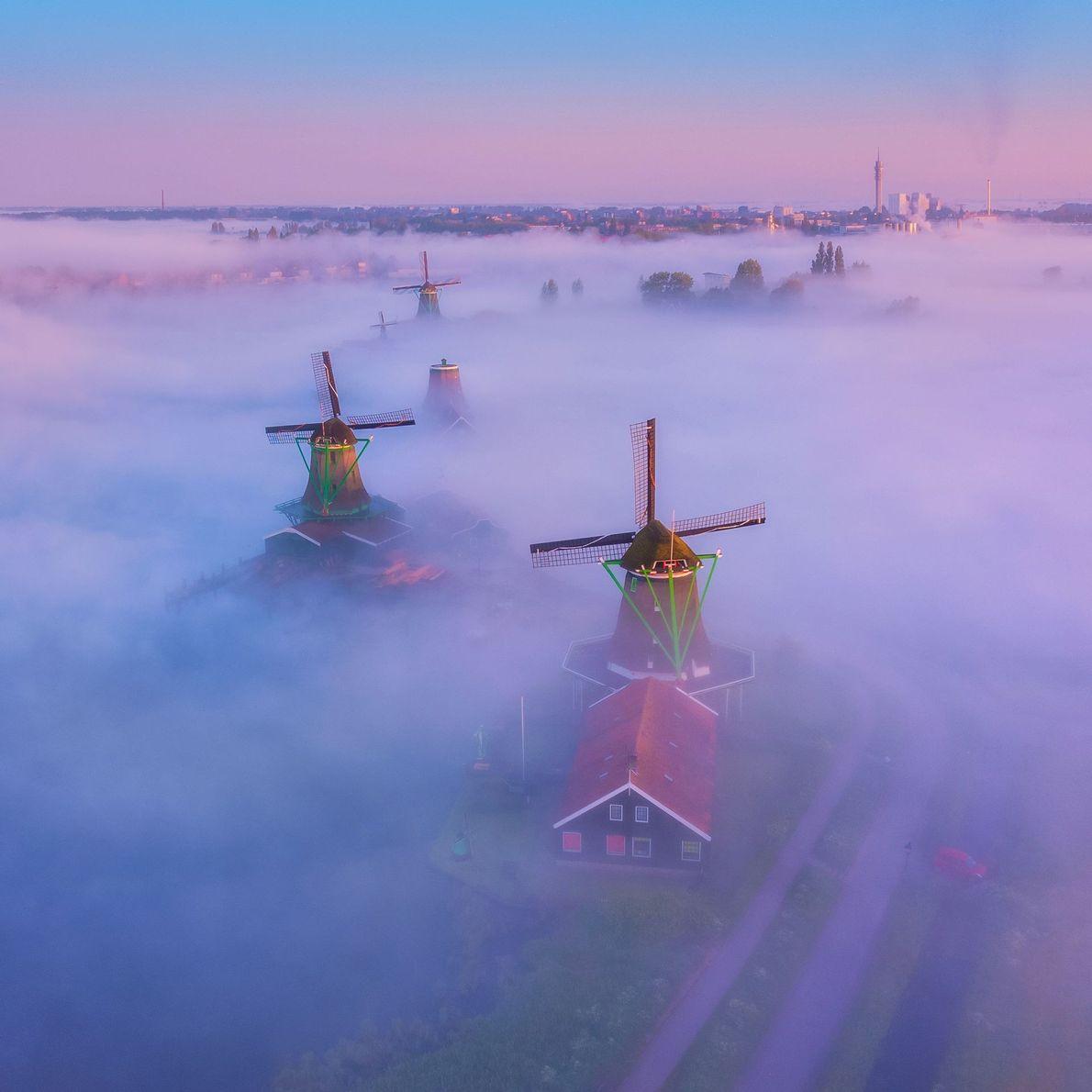 Molinos en la niebla