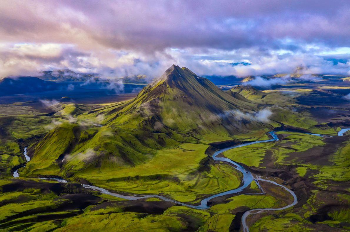 Islandia verdosa
