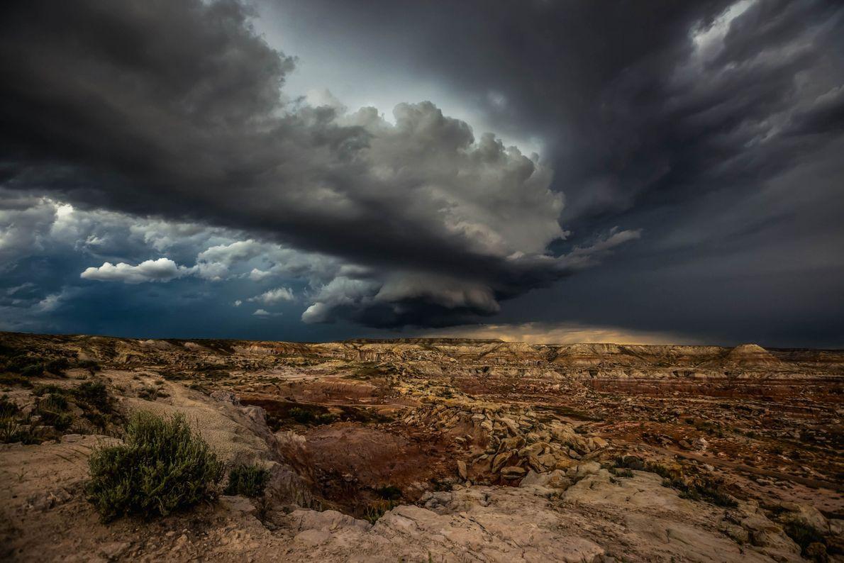 Amaina la tormenta