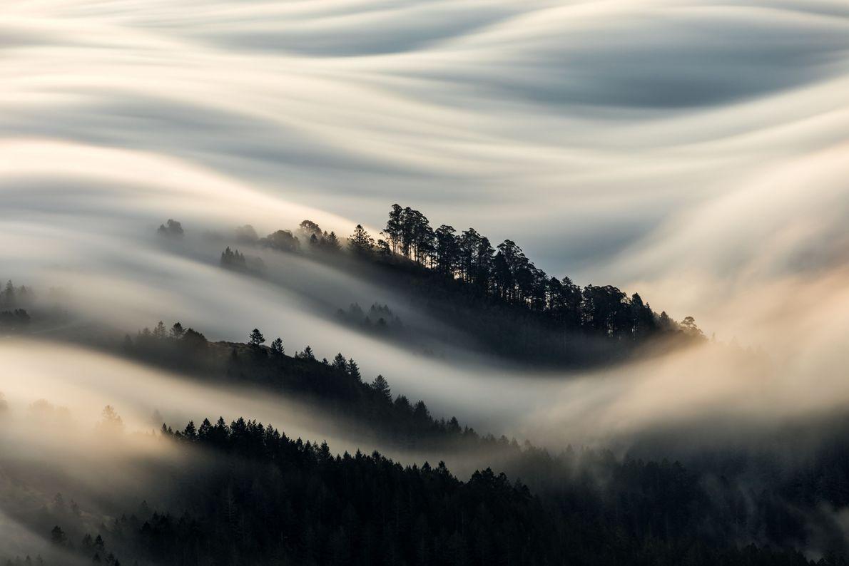 Manto de niebla