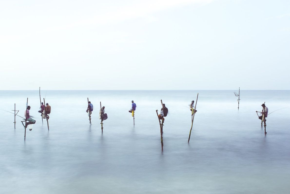 Pescadores zancudos