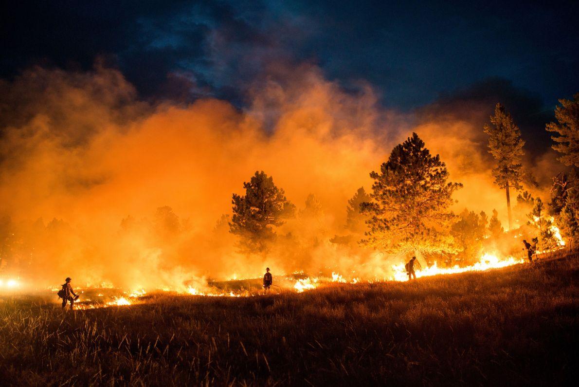 Combatiendo el fuego con fuego