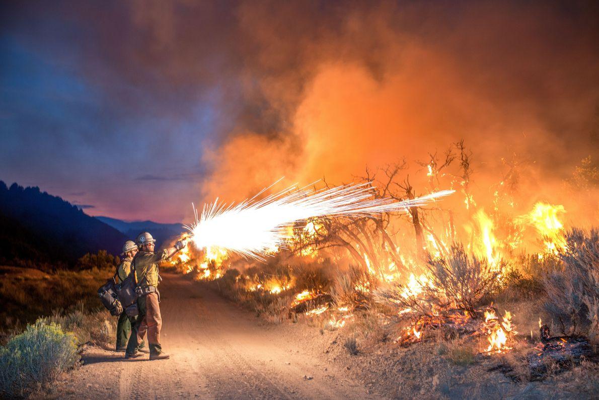 Combatiendo el fuego