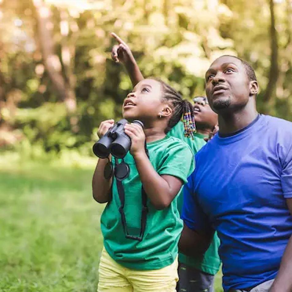 Cómo evitar que la curiosidad infantil afecte a la fauna y la flora