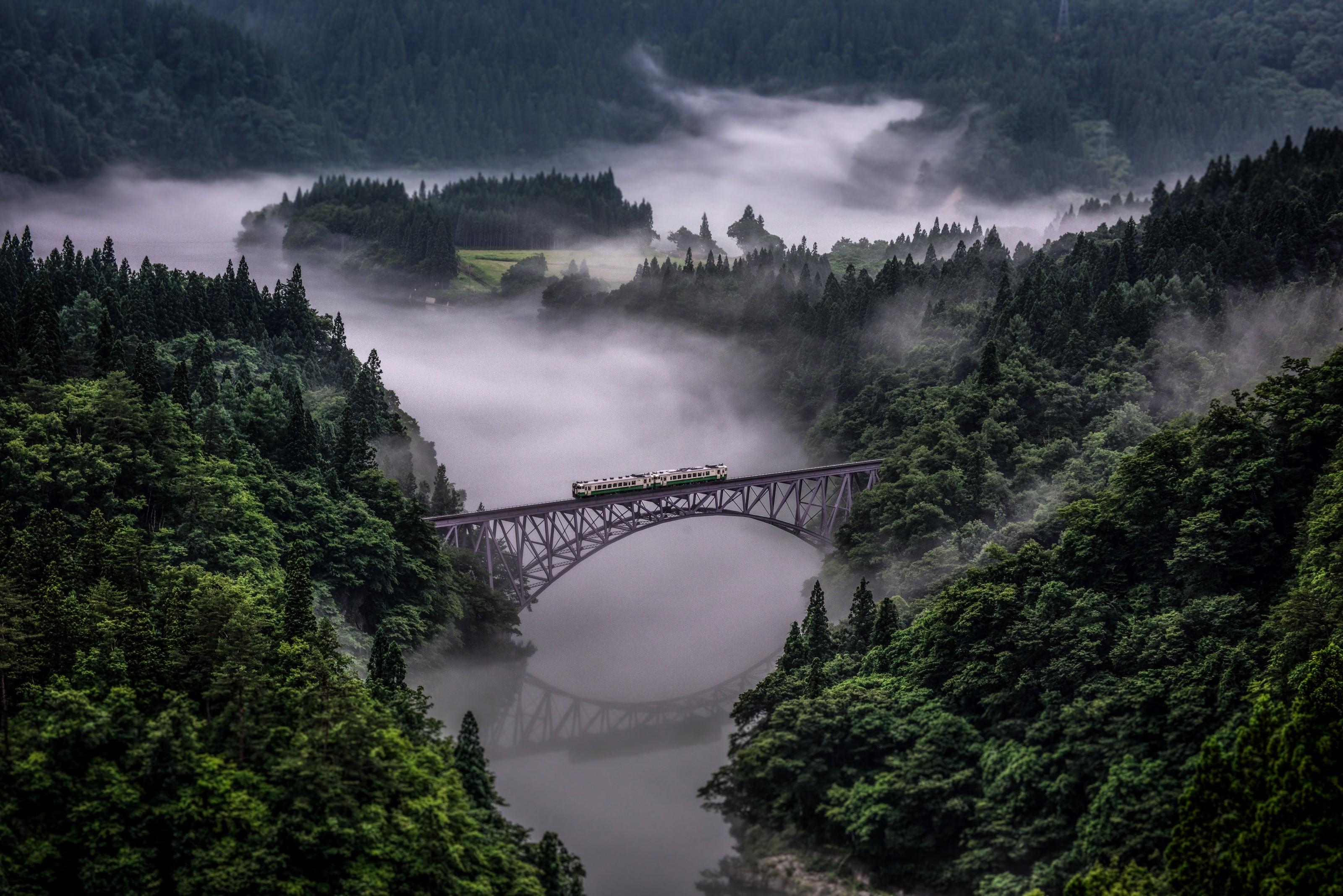 A través de la niebla