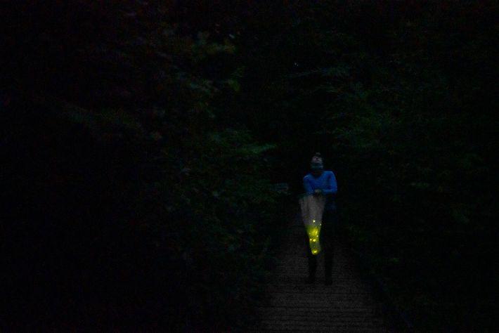 Julie Hayes captura luciérnagas