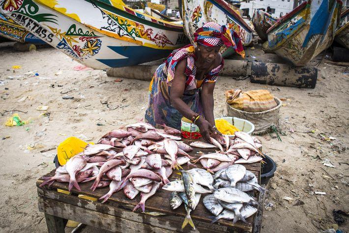 Imagen de un mercado de pescado en Dakar, Senegal