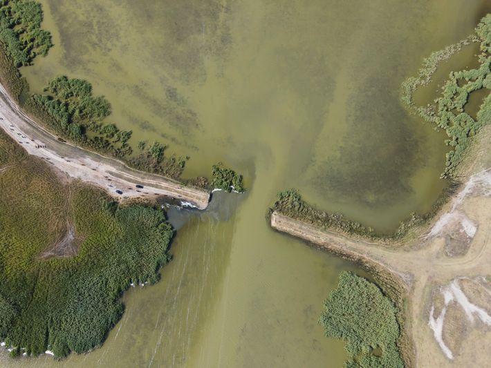 Plano cenital del río Cogâlnic