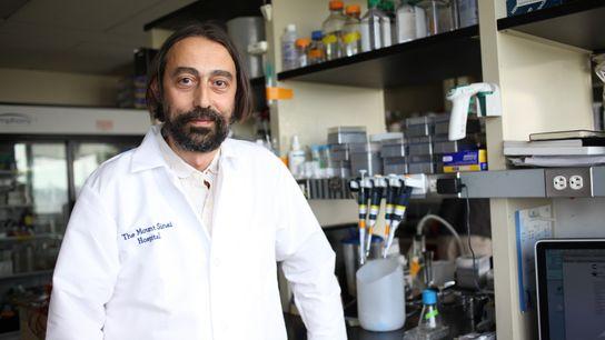 El doctor Adolfo García-Sastre en su laboratorio de la Escuela de Medicina Icahn del Hospital Mont ...