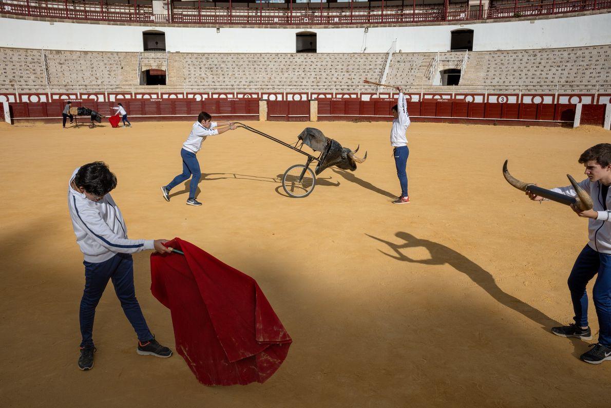 Picasso y las corridas de toros