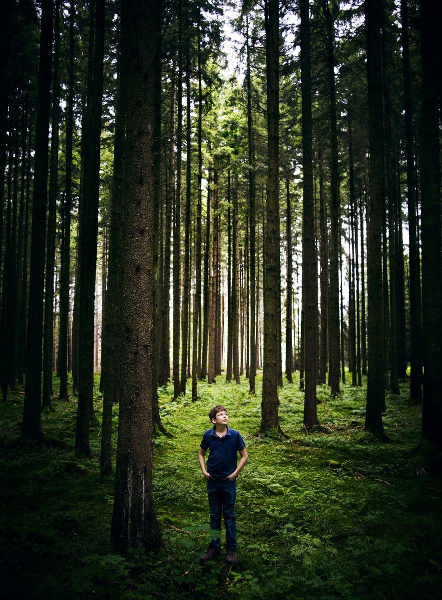 Felix Finkbeiner (en una foto de agosto de 2011) convirtió la plantación de árboles en su ...