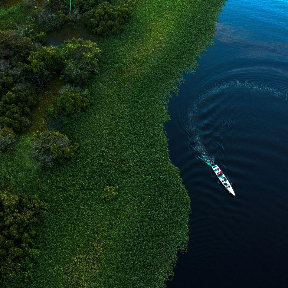 ¿Contribuyó la selva amazónica a la «Pequeña Edad de Hielo» del siglo XVII?